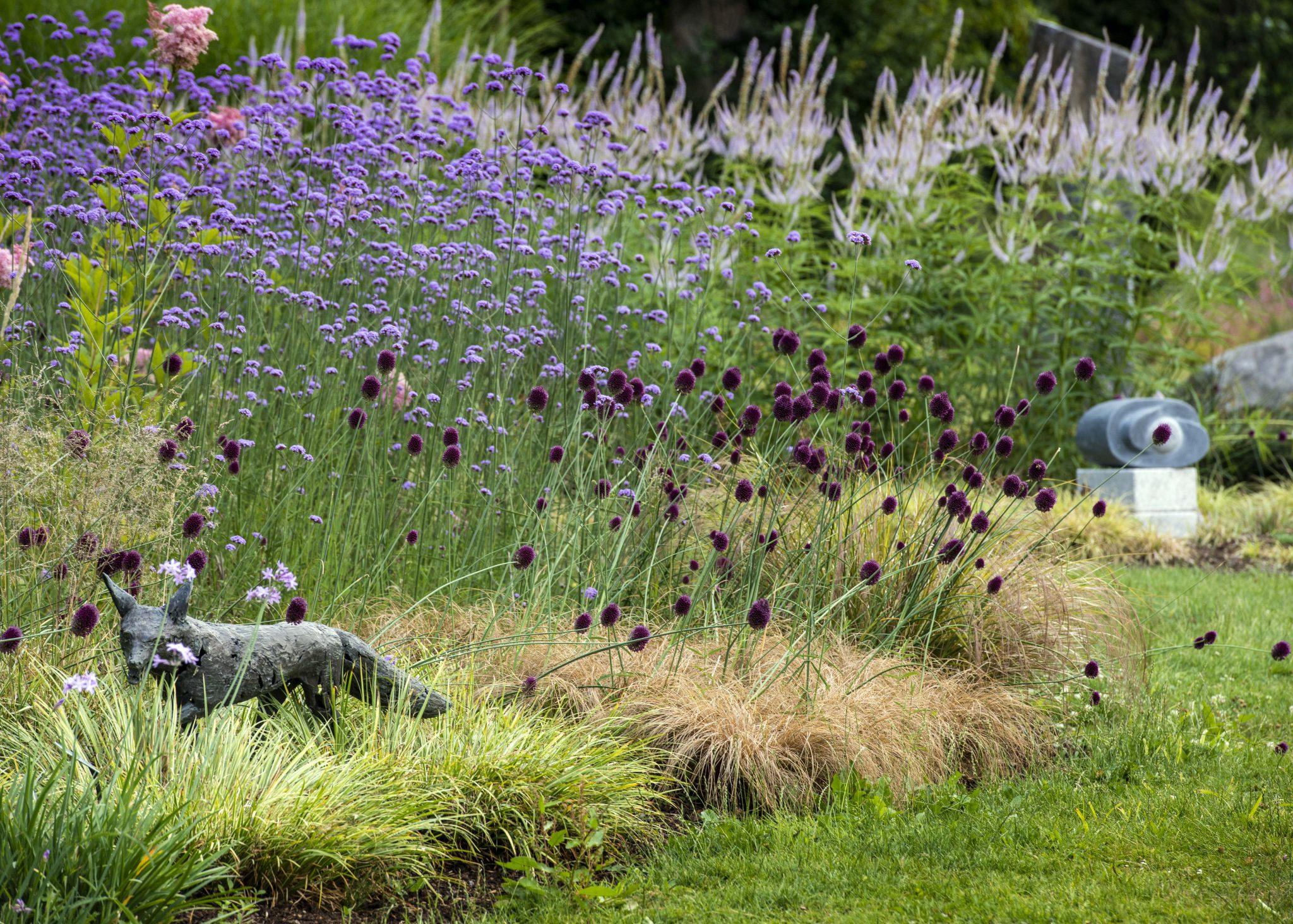 Blarney Castle and Gardens-15