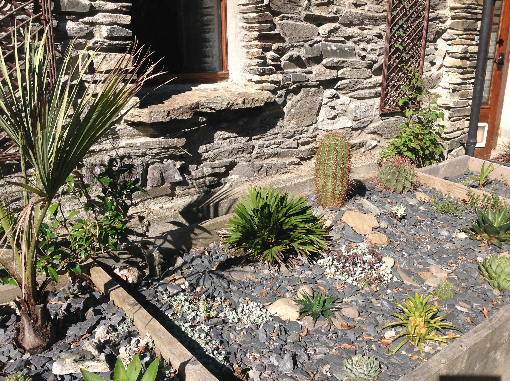 The Fernery main